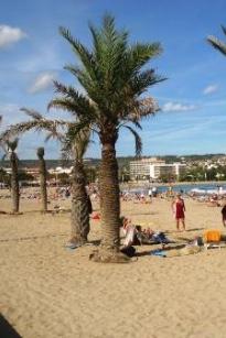 Costa Blanca Javea Strand