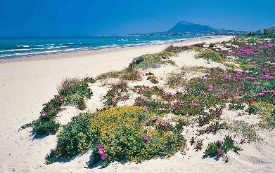 Denia Strand