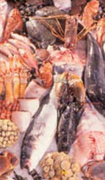 fish dishes Altea - Costa Blanca - Spain