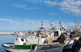 Il porto di pesca di Jávea