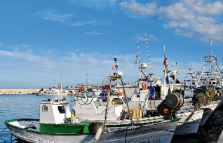 The fishing harbour of Javea